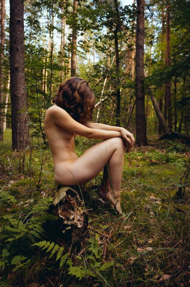 Her Forest II